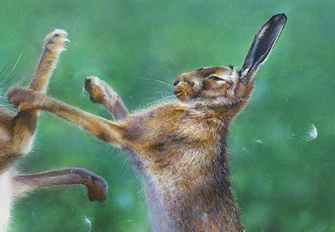 Boxing Hares Detailed