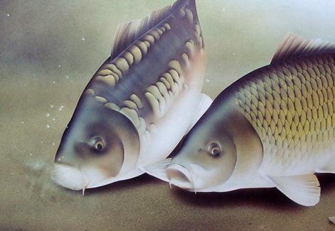 Mirror Amp Common Carp Artist James Green